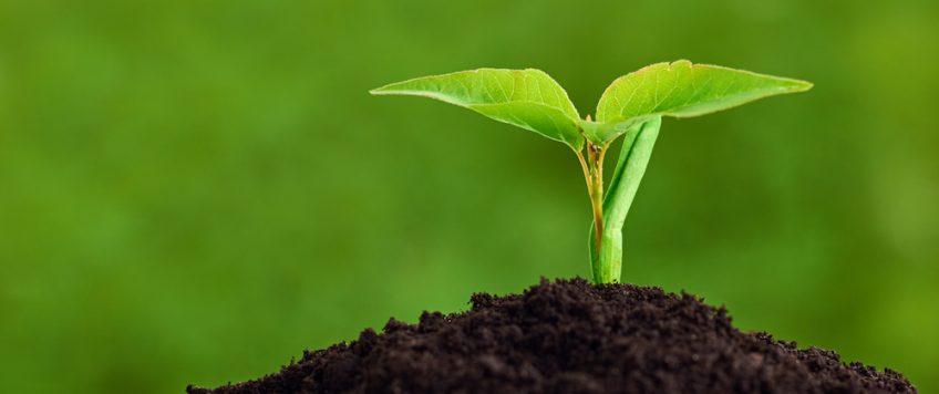 formation sur les produits phytosanitaires